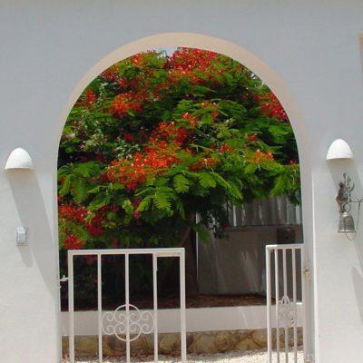 02 pappa north entrance